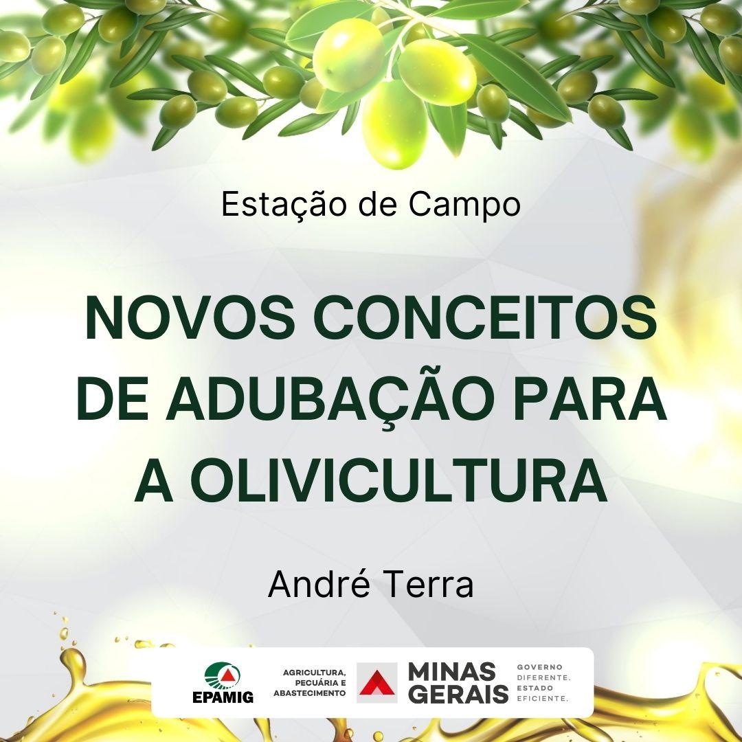 Novos conceitos de adubação para a olivicultura